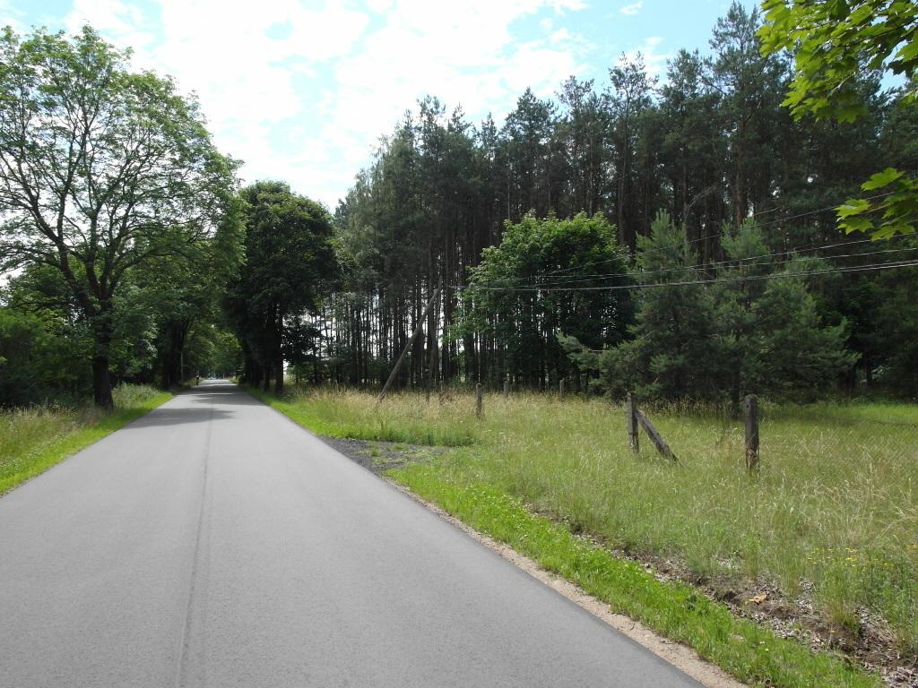 IDEALNA OFERTA DLA INWESTORA   Oferta sprzedaży atrakcyjnej działki o pow. 1,17 ha położonej w Górkach Noteckich ...