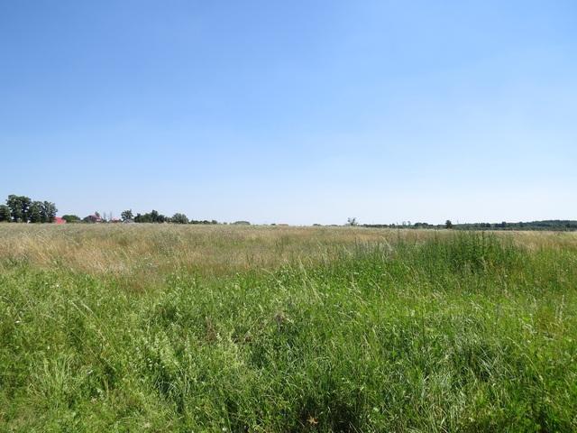 Działka przeznaczona pod budowę, położona w miejscowości Ściechów, w gminie Lubiszyn, ok. 20 km od Gorzowa Wlkp. ...