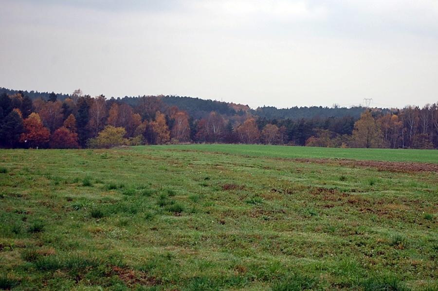 Działka o pow. 2.104 m2 położona w malowniczej lokalizacji, w sąsiedztwie lasu, obręb Czechów.  Media: ...