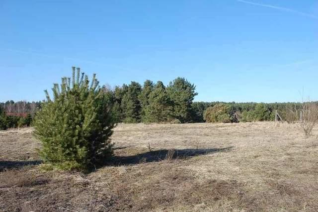 Działki w Białczu, 20 km od Gorzowa, z dobrym dojazdem, położone w ładnej okolicy, blisko lasu, w pobliżu osiedla ...